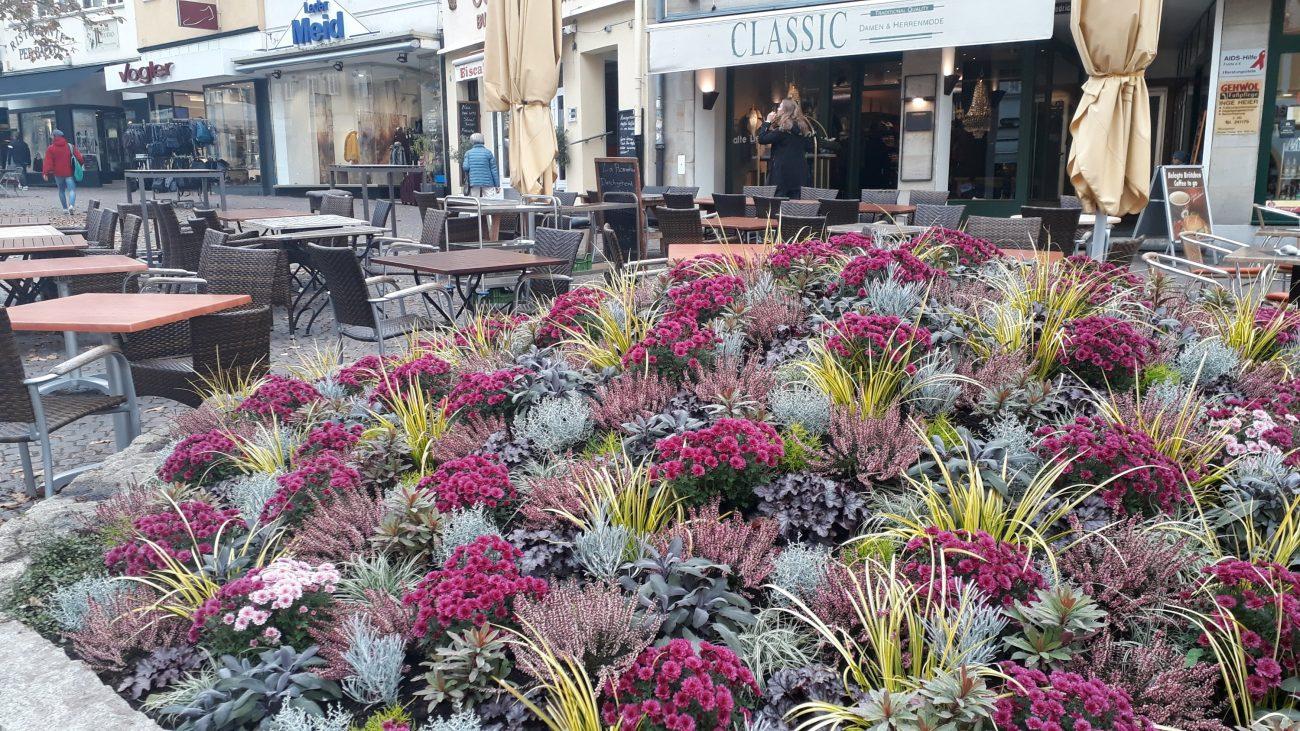 Herbstbepflanzung Fulda