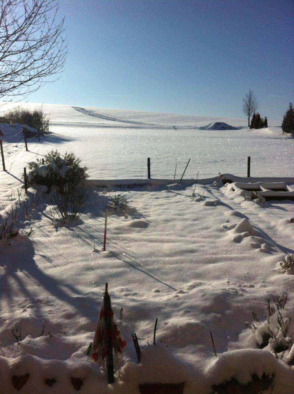 glitzer-winterlandschaft-rhoen-2015-03